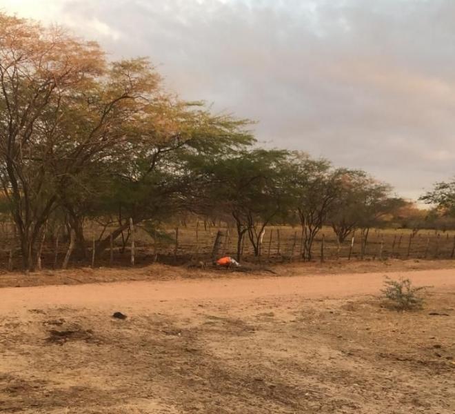 Ex-presidiário é encontrado morto na zona rural de Mossoró
